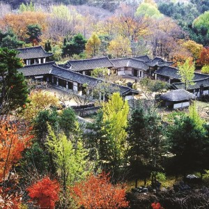 Folk Village_Fall
