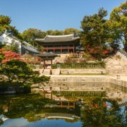 Changdeokgung Palace 05